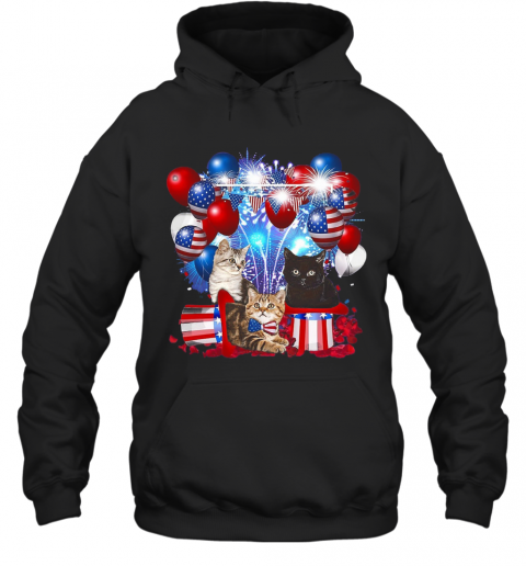 Cats Balloons Fireworks Independence Day 4Th Of July T-Shirt Unisex Hoodie