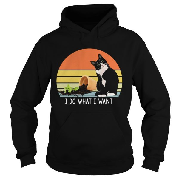 Black cat I do what I want vintage  Hoodie