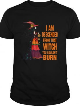 Witch I Am Descended From That Witch You Couldn't Burn shirt