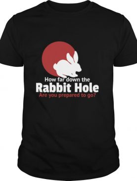 How Far Down The Rabbit Hole Are You Prepared To Go shirt
