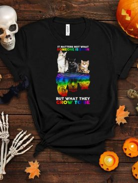 LGBT cats water reflection it matters not what someone is born but what they grow to be shirt